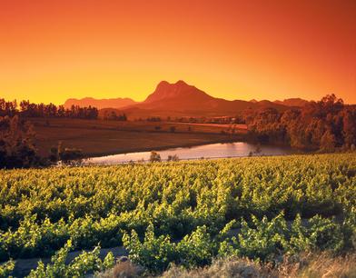 Weinregionen Spanien